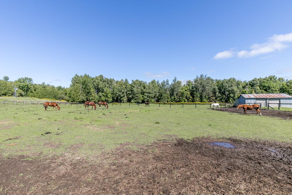 http://listingtour.s3-website-us-east-1.amazonaws.com/5691-concession-road-2/River&Extra-106.jpg